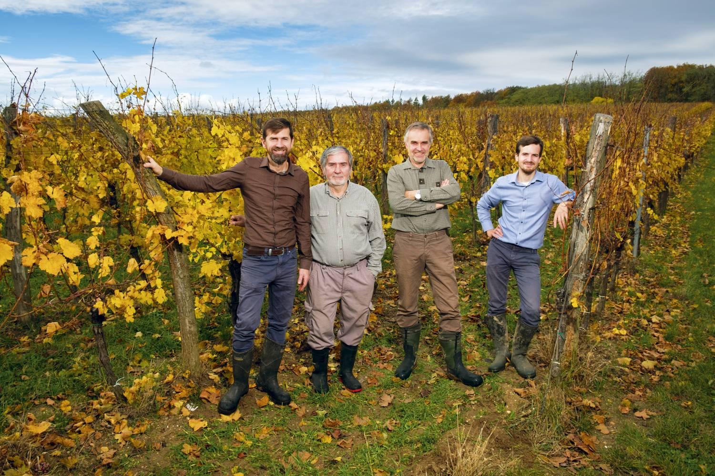 Rodina Špalkových ve vinohradu